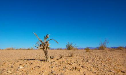 Clima, l'apartheid del ventunesimo secolo.